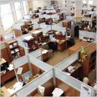 Office_employee