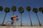 bicycle_austin
