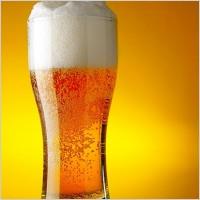 Beer_FAT_Tire